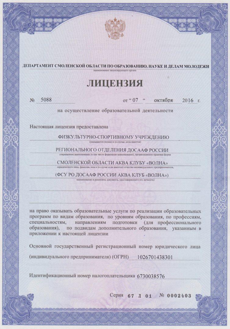 volna_лицензия01
